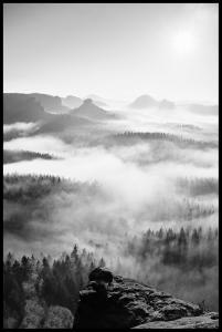 Foggy Forest Black & White I - 50x70 cm Poster